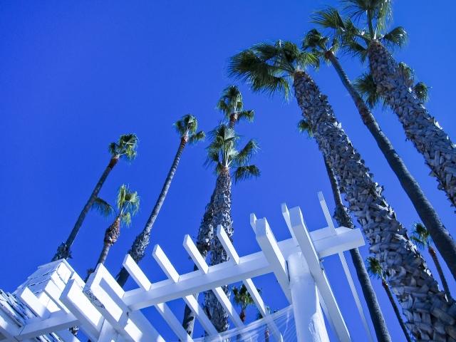 カリフォルニアのイメージ