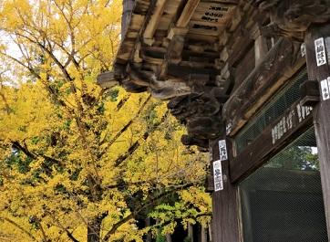 筑波山神社 紅葉のイメージ